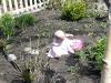 LiliBee finds an egg.