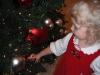 LiliBee checks out Santa\'s tree.