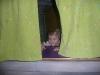 Peek-a-LiliBee.