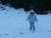 CareBear snow