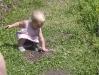 LiliBee likes the valley soil.