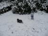 March snow!