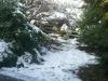 More spring snow.