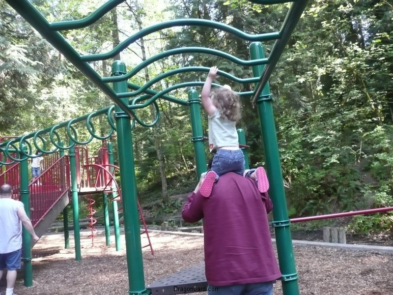A little help on the monkey bars.
