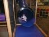 LiliBee slides.