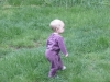 LiliBee the wanderer.