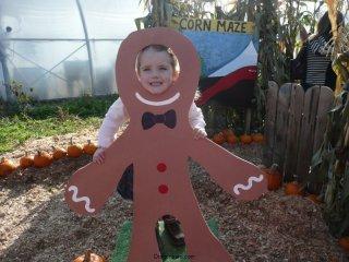 Gingerbread CareBear.