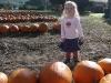 Pumpkin girl!