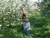 Apple pickers.
