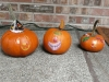 The finished pumpkins!