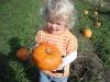LiliBee picked a pumpkin!