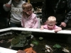 Cousin H and LiliBee check out the aquarium\'s touch tank.